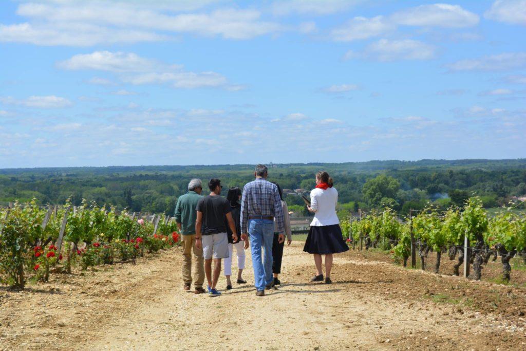 Visite vignoble Château de Rayne Vigneau